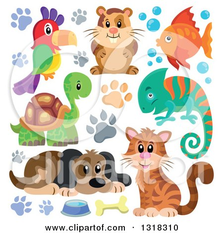 Clipart of a Cartoon Dog, Parrot, Hamster, Fish, Chameleon, Tortoise, and Cat with Paw Prints - Royalty Free Vector Illustration by visekart