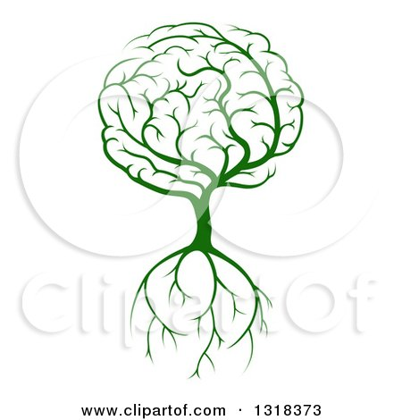 Clipart of a Green Brain Tree with a Roots - Royalty Free Vector Illustration by AtStockIllustration