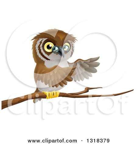 Clipart of a Cartoon Bespectacled Owl Perched on a Branch and Presenting - Royalty Free Vector Illustration by AtStockIllustration