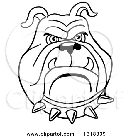 Clipart of a Cartoon Black and White Angry Bulldog Face with a Spiked Collar - Royalty Free Vector Illustration by LaffToon