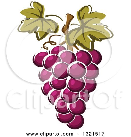 Clipart of Cartoon Purple Grapes - Royalty Free Vector Illustration by Vector Tradition SM