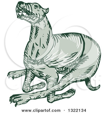 Clipart of a Retro Engraved Running Greyhound Dog - Royalty Free Vector Illustration by patrimonio