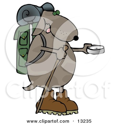 Dog Using a Compass While Hiking Clipart Illustration by djart