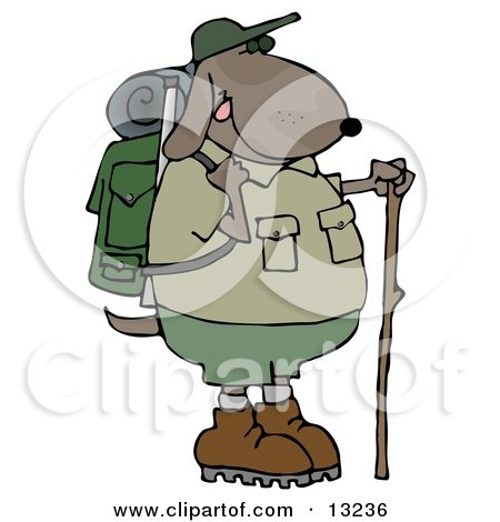 Dog Using a Hiking Stick While Backpacking With Camping Gear Posters, Art Prints