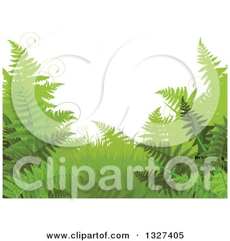 Clipart of a Background of Green Ferns and Tendrils - Royalty Free Vector Illustration by Pushkin