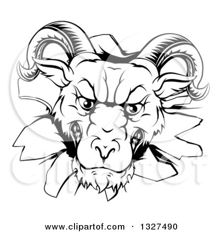 Clipart of a Black and White Angry Snarling Ram Breaking Through a Wall - Royalty Free Vector Illustration by AtStockIllustration