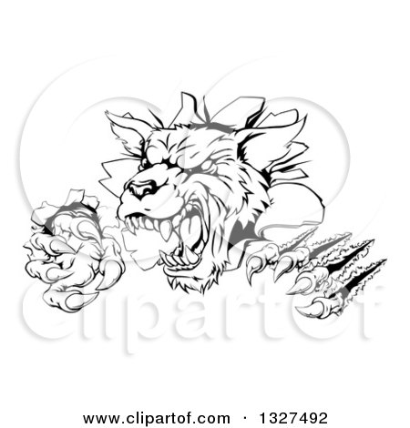 Clipart of a Black and White Ferocious Wolf Slashing and Breaking Through a Wall 2 - Royalty Free Vector Illustration by AtStockIllustration