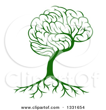 Clipart of a Green Brain Tree and a Roots - Royalty Free Vector Illustration by AtStockIllustration