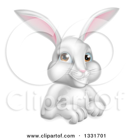 Clipart of a Cartoon Happy White Rabbit over a Sign - Royalty Free Vector Illustration by AtStockIllustration