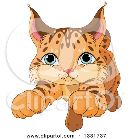 Clipart of a Cute Baby Bobcat Cub Pouncing - Royalty Free Vector Illustration by Pushkin
