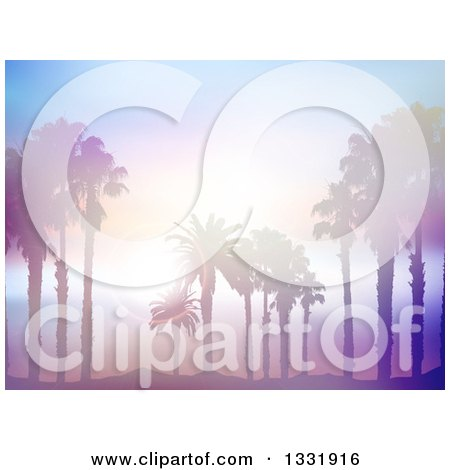 Clipart of a Background of Silhouetted Palm Trees on a Beach Against a Blurred Misty Ocean with Sunset Flares - Royalty Free Vector Illustration by KJ Pargeter