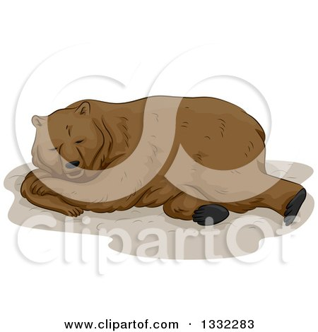 Clipart of a Brown Bear Hibernating - Royalty Free Vector Illustration by BNP Design Studio
