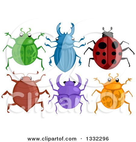 Clipart of Colorful Beetles - Royalty Free Vector Illustration by BNP Design Studio