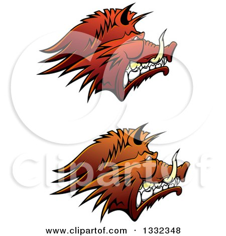 Clipart of Brown Snarling Vicious Razorback Boar Mascot Heads in Profile - Royalty Free Vector Illustration by Vector Tradition SM