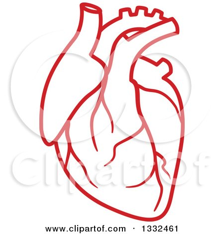 clipart of a red human heart royalty free vector illustration by rh clipartof com human heart clipart labeled human heart clipart labeled