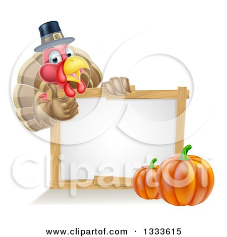 Clipart of a Happy Thanksgiving Pilgrim Turkey Bird Giving a Thumb up over a Blank White Board Sign with Pumpkins - Royalty Free Vector Illustration by AtStockIllustration