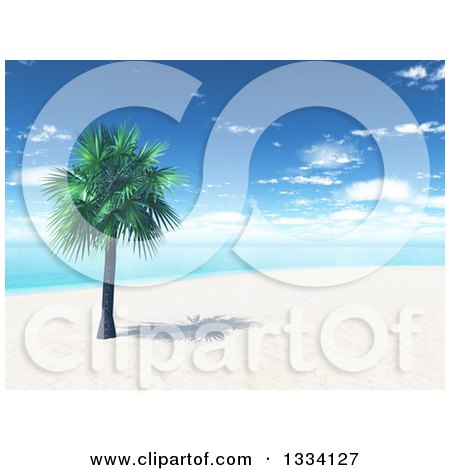 Clipart of a 3d Tropical Island Beach with White Sand, a Palm Tree and Blue Water with Clouds in the Sky - Royalty Free Illustration by KJ Pargeter