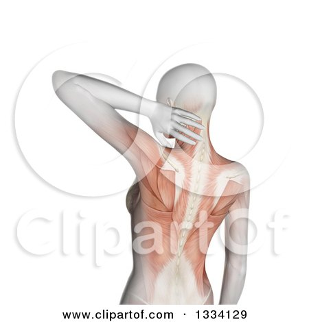 Clipart of a 3d Rear View of an Anatomical Woman with Visible Muscles, Grasping Her Painful Neck, over White - Royalty Free Illustration by KJ Pargeter