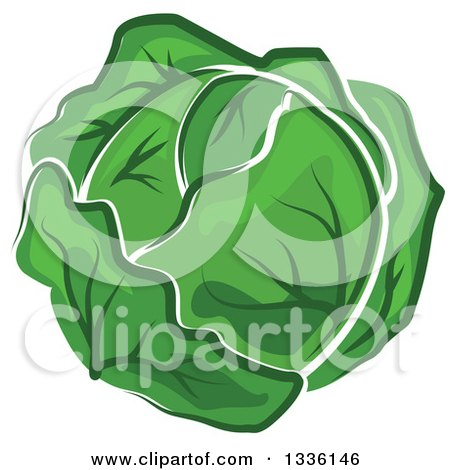 Clipart of a Cartoon Cabbage or Lettuce Head - Royalty Free Vector Illustration by Vector Tradition SM