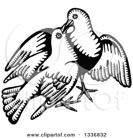 Clipart of a Sketched Black and White Doodle of a Dove Pair - Royalty Free Vector Illustration by Prawny