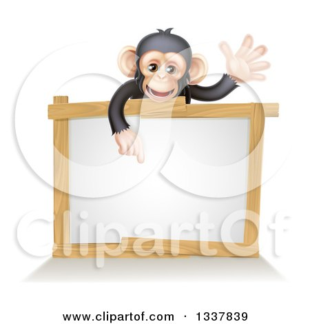 Clipart of a Cartoon Black and Tan Happy Baby Chimpanzee Monkey Waving and Pointing down over a Blank White Sign Framed in Wood - Royalty Free Vector Illustration by AtStockIllustration