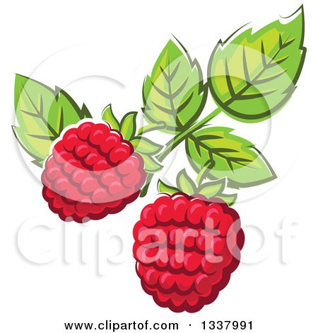 Clipart of Cartoon Raspberries and Leaves - Royalty Free Vector Illustration by Vector Tradition SM