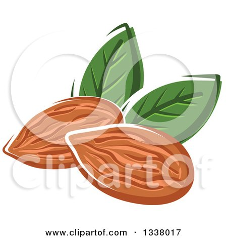 Clipart of Cartoon Almonds with Leaves - Royalty Free Vector Illustration by Vector Tradition SM