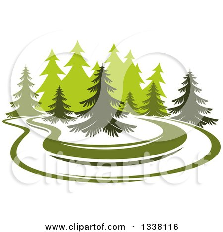 Park with Evergreen Trees Posters, Art Prints