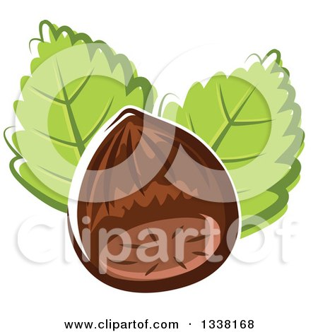 Clipart of a Cartoon Hazelnut and Leaves - Royalty Free Vector Illustration by Vector Tradition SM