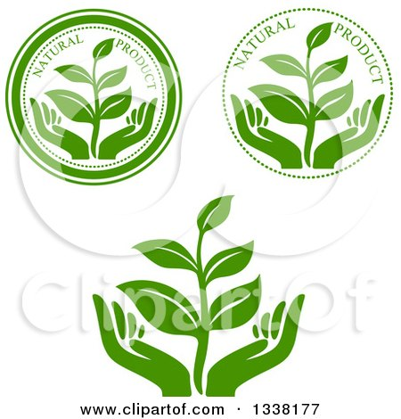 Clipart of Seedling Plant and Hand Green Natural Product Labels - Royalty Free Vector Illustration by Vector Tradition SM