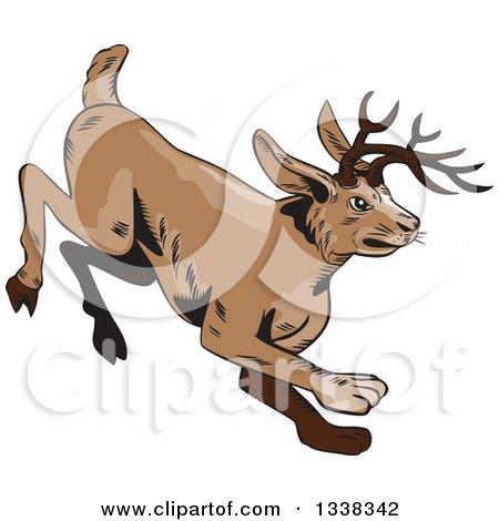 Clipart of a Sketched or Engraved Running Jackalope - Royalty Free Vector Illustration by patrimonio