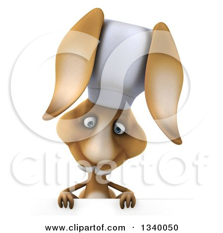Clipart of a 3d Brown Bunny Rabbit Chef Looking down over a Sign - Royalty Free Illustration by Julos