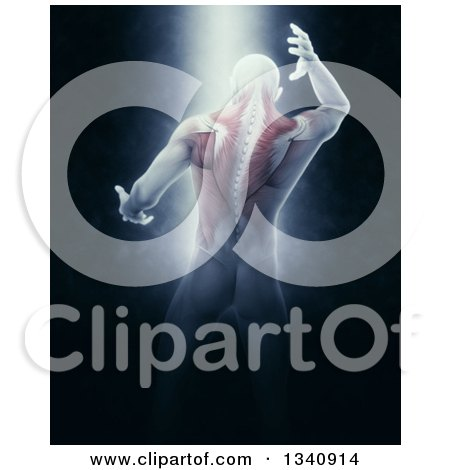 Clipart of a 3d Rear View of a Medical Anatomical Male Reaching Back, with Visible Muscles, on Black with Shining Light - Royalty Free Illustration by KJ Pargeter