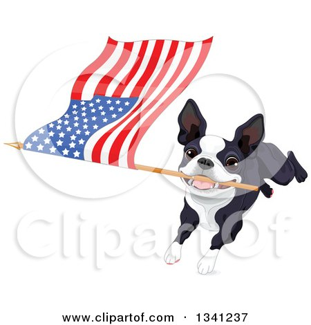 Clipart of a Cute Boston Terrier or French Bulldog Running with an American Flag - Royalty Free Vector Illustration by Pushkin