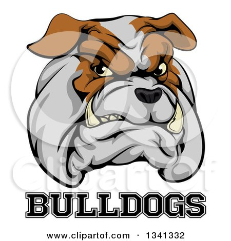 Clipart of a Growling Aggressive Bulldog Mascot Face over Text - Royalty Free Vector Illustration by AtStockIllustration