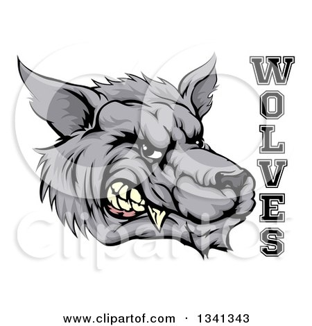 Clipart of a Snarling Gray Wolf Mascot Head and Text - Royalty Free Vector Illustration by AtStockIllustration