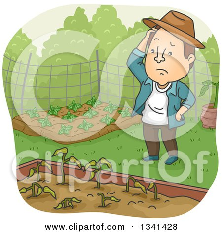 Clipart of a Cartoon Brunette White Man Pondering over Wilting Plants in a Garden Bed - Royalty Free Vector Illustration by BNP Design Studio