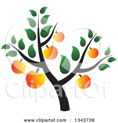 Clipart of a Tree with Ripe Apricots - Royalty Free Vector Illustration by ColorMagic