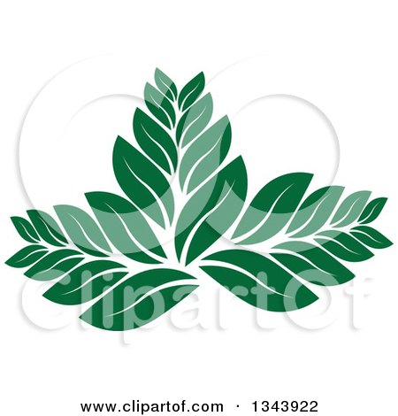 Clipart of a Green Leaf Design - Royalty Free Vector Illustration by ColorMagic