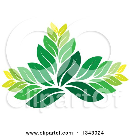 Clipart of a Green Leaf Design 4 - Royalty Free Vector Illustration by ColorMagic