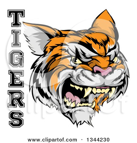 Clipart of a Vicious Growling Tiger Mascot Face and Text - Royalty Free Vector Illustration by AtStockIllustration
