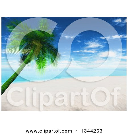 Clipart of a 3d White Sand Beach and Leaning Palm Tree Tropical Beach with the Ocean and Shining Sun - Royalty Free Illustration by KJ Pargeter