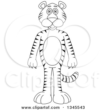 Clipart of a Cartoon Black and White Outline Standing Tiger - Royalty Free Vector Illustration by Liron Peer