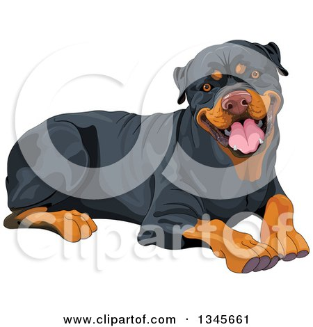 Clipart of a Cute Happy Rottweiler Dog Resting - Royalty Free Vector Illustration by Pushkin