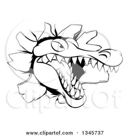 Clipart of a Black and White Snapping Alligator or Crocodile Head Breaking Through a Wall - Royalty Free Vector Illustration by AtStockIllustration