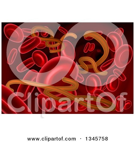 Clipart of a Background of 3d Blood Cells and the Ebola Virus - Royalty Free Vector Illustration by AtStockIllustration