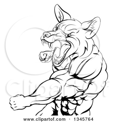 Clipart of a Black and White Muscular Fox Man Mascot Punching from the Hips up - Royalty Free Vector Illustration by AtStockIllustration