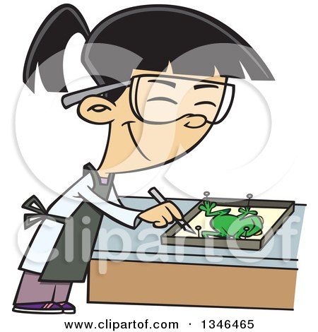 Clipart of a Cartoon Asian School Girl Dissecting a Frog in Class - Royalty Free Vector Illustration by toonaday