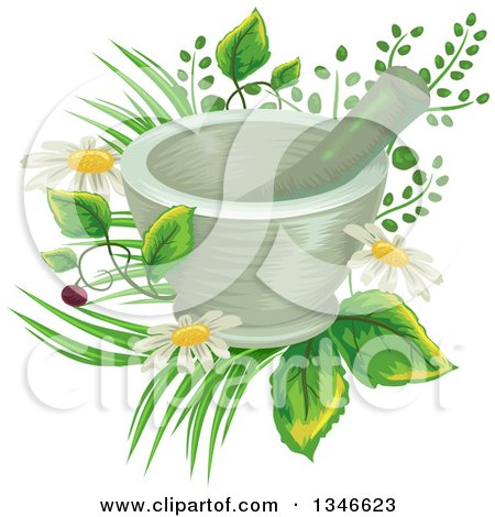 Clipart of a Mortar and Pestle over Flowers and Medicinal Plants - Royalty Free Vector Illustration by BNP Design Studio