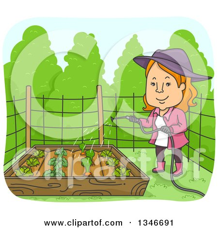 Clipart of a Cartoon Red Haired Caucasian Woman Watering Vegetable Plants in a Raised Garden Bed - Royalty Free Vector Illustration by BNP Design Studio